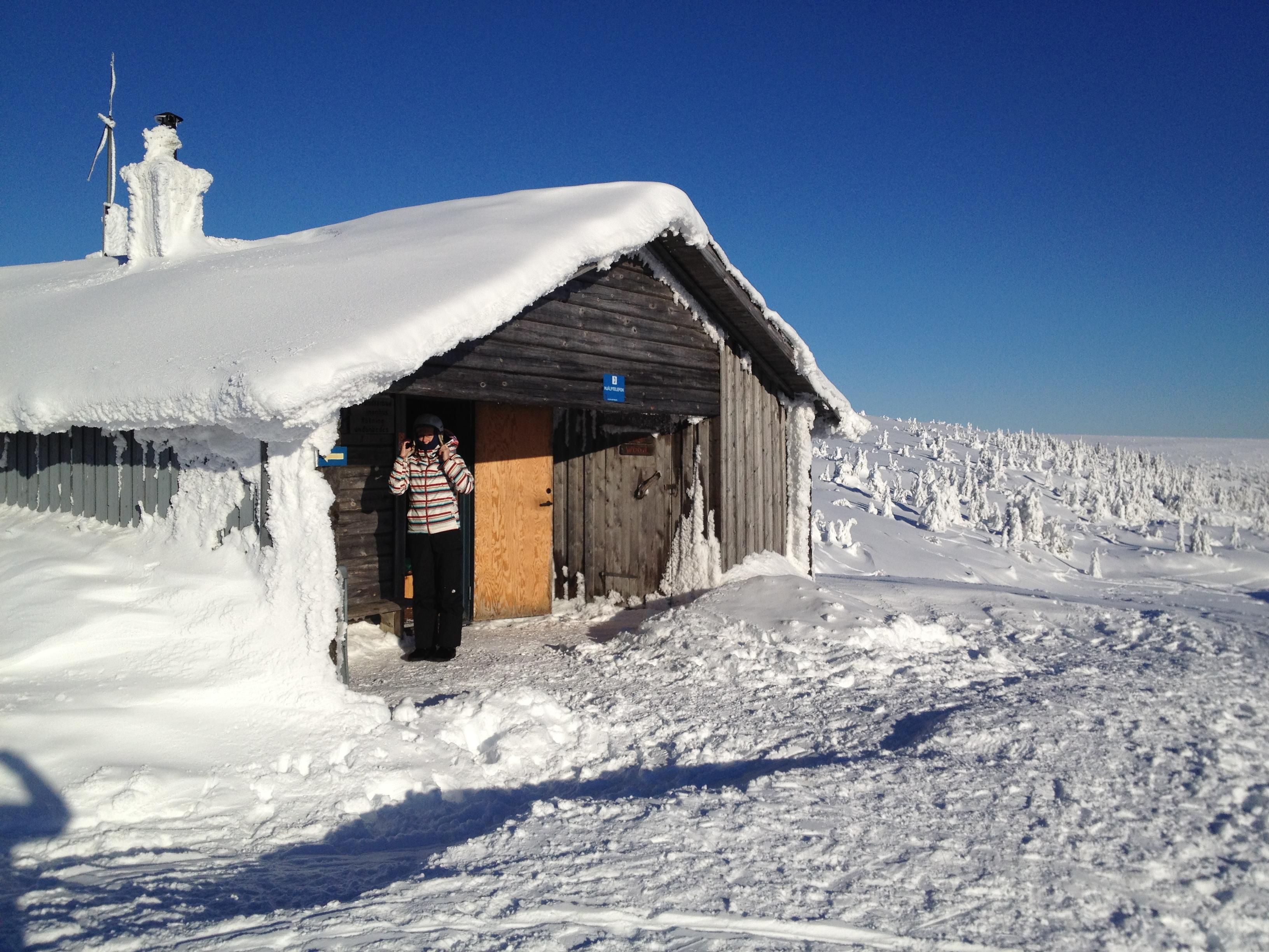 eskorte tjenester islandske damer